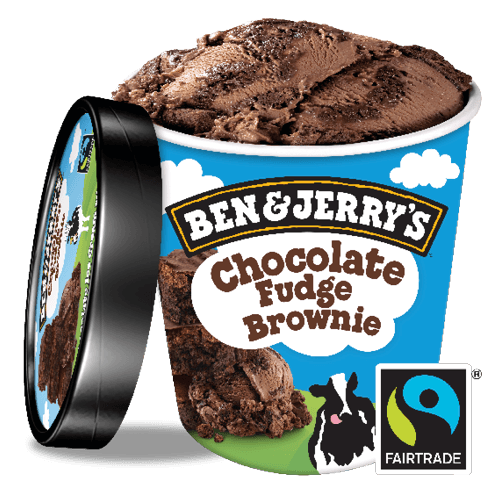 Chocolate Fudge Brownie (500ml)