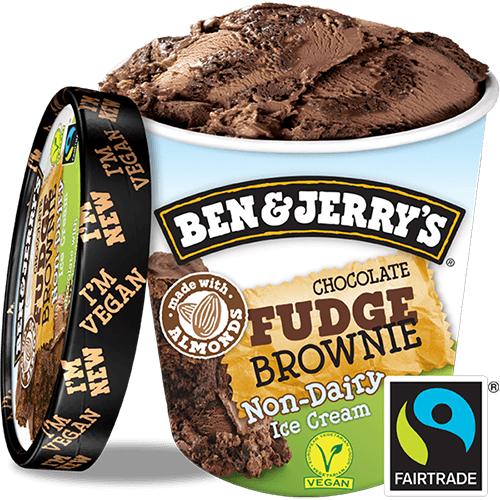 Ben & Jerry's Non-Dairy Chocolate Fudge Brownie (500ml)