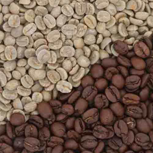Cachoeira koffie 1 kilo